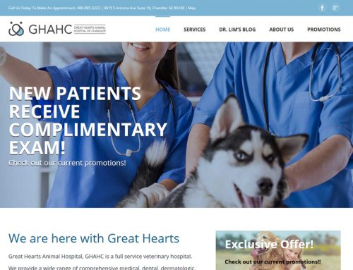 Great Hearts Animal Hospital 동물병원